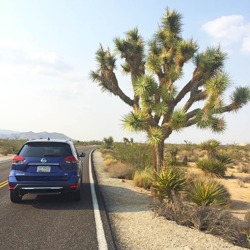 road trip ai parchi americani: l'auto a noleggio